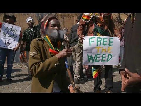 العرب اليوم - شاهد: احتفالات في جنوب أفريقيا بعد تشريع استخدام الماريجوانا