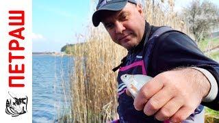 Инструкция рыбалка на поплавок весной