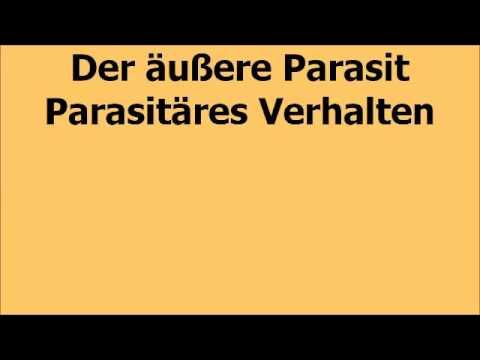Die Analyse des Blutes der Parasit die Norm