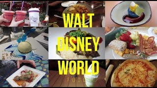 What I Ate In Walt Disney World! | DDP Meals & Snacks