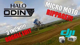 Micro Moto Rippage - DJI FPV Goggle DVR - HaloRC Odin - Caddx Vista 50mbps
