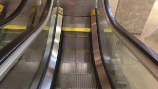 Schindler Single-File Escalators Near Former Macy*s Fountain Place In Downtown Cincinnati, OH