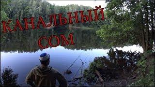 Как ловить канального сомика в рыбном месте новая эра