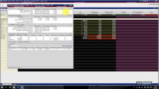 TWS / Trader Workstation Schnellstart Kurzanleitung