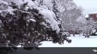 SnowWinter Quotes