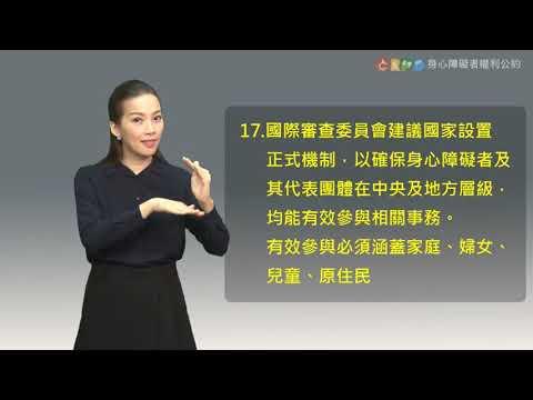 身心障礙者權利公約中文版 結論性意見