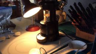 Guatemala Robusta SR700 French Press Roast Profile