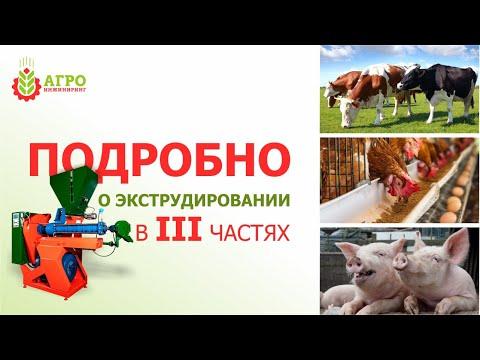 Что такое экструдированные корма? Как делаются? Как влияют на животных?