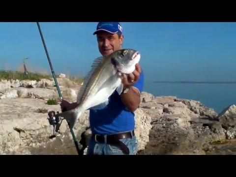 La pesca su Volga con riposo