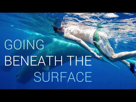 Going beneath the surface | University of Southampton