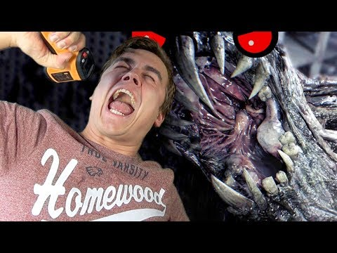 RODÍ SE Z PLÍSNĚ-3-Resident Evil 7