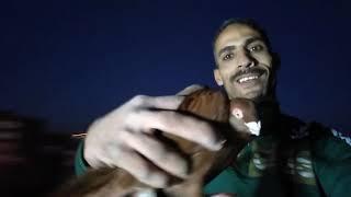 نش التماس جبت جووول فى الوقت الضايع وضربت احمر غزار#التربووووو#ابوحازم