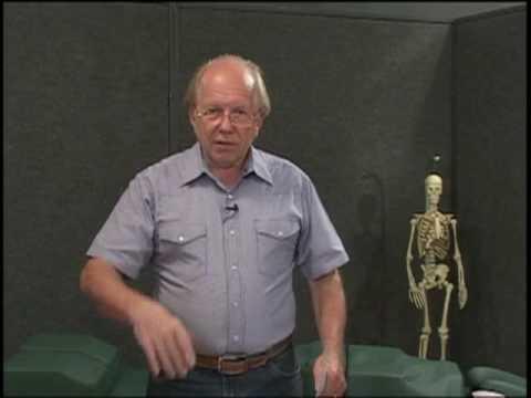 Schmerzen im Bereich der Halswirbelsäule