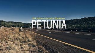 Alick Macheso   Petunia (2000)