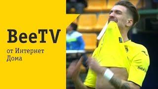 BeeTV от Интернет Дома