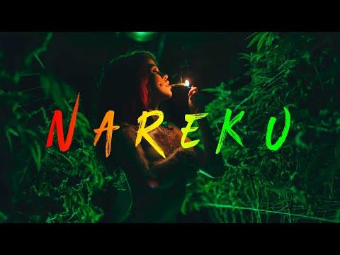 Nareku - Ragga Mix (Reggae, Raggastep, Dub) + Tracklist