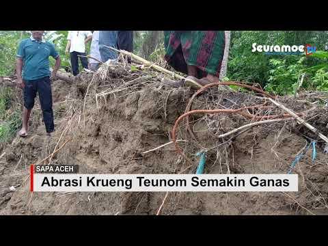 VIDEO : Abrasi Krueng Teunom Ancam Pemukiman Masyarakat, DPRK Minta Premprov Tidak Pandang Sebelah Mata