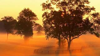 OSTBeautifulDays-RememberingMe-SENS
