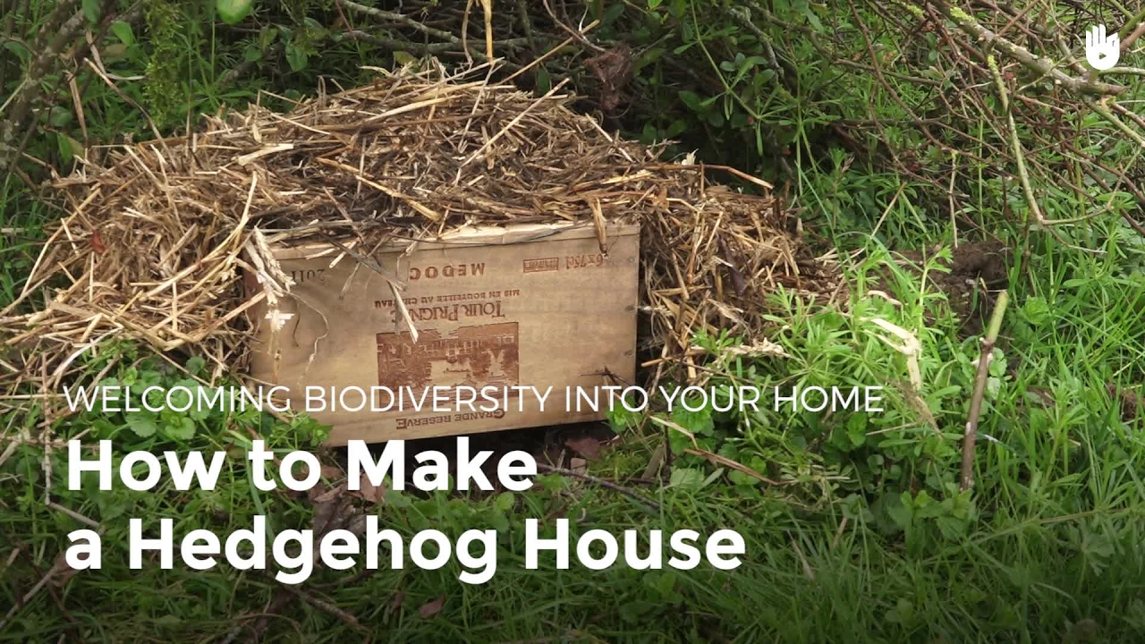How to Make a Hedgehog House - How to Build Animal ...