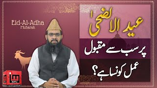 Eid ul Adha par sab sey maqbool amal | Eid Mubarak 2020 | Alama Hafeez Ullah Farooqi | IM Tv