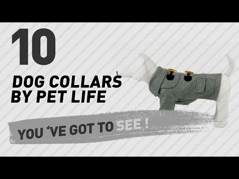 Dog Collars By Pet Life // Top 10 Most Popular