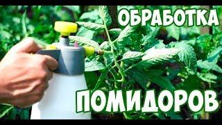 Чем обработать помидоры 🍎 Урожайный Сад огород 🍎 Томаты