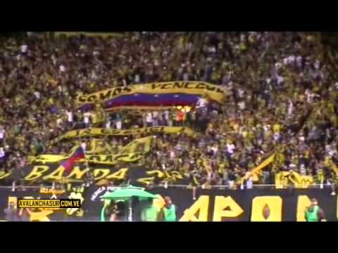 """Dvo. Táchira Vs Colo Colo 01-03-11 AVSUR"" Barra: Avalancha Sur • Club: Deportivo Táchira"
