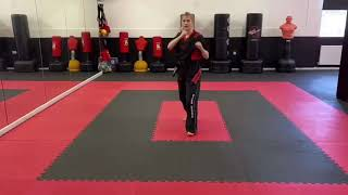 Back leg round house kick