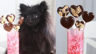 Valentines Day Treats FOR DOGS!   Safe Chocolate for Dogs   DIY Dog Treats   Homemade Dog Treats