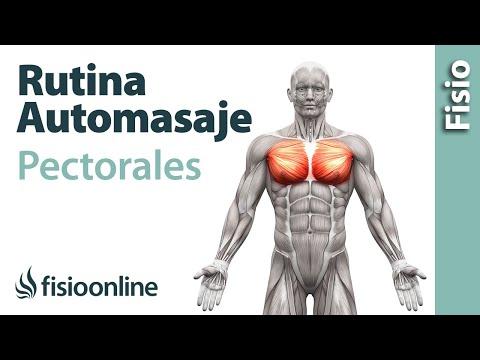 El ajuste de las glándulas mamarias sin implantov el precio en permi