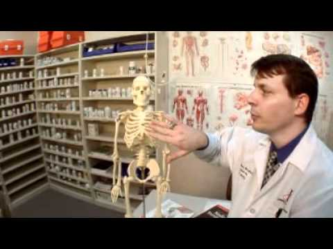 Find out What Medical Billing Coders Do