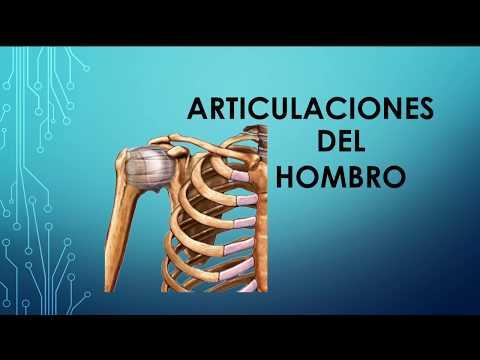 Ecografía de Medicina de la articulación del hombro