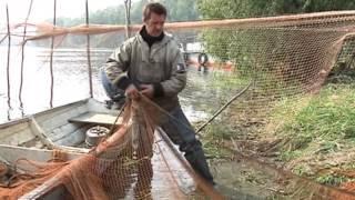 Орудия ловли рыбы неводом