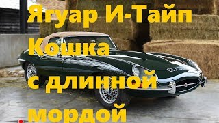 Автолегенды: Jaguar E-Type - кошка с длинной мордой