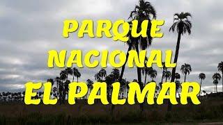 preview picture of video 'Parque Nacional del Palmar. ARGENTINA'