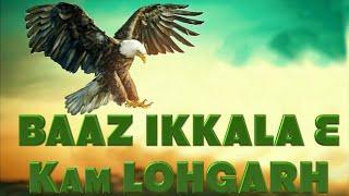 BAAZ (ਇਹ ਬਾਜ਼ ਇਕੱਲਾ ਹੈ ਇਸਦੇ ਮਗਰ ਨੇ ਬਹੁਤ ਸ਼ਿਕਾਰੀ ) - KAM LOHGARH  Ladhubhanie