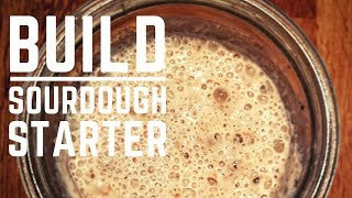 How to Build a Sourdough Starter from Scratch