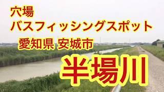 半場川穴場バス釣りポイント愛知県安城市ブラックバス
