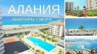 Купить квартиру в Алании, Тосмур, первая береговая линия. Недвижимость в Турции
