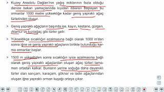 Eğitim Vadisi 10.Sınıf Coğrafya 12.Föy Türkiye'de Doğal Bitki Örtüsü 1 Konu Anlatım Videoları