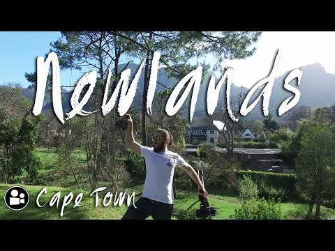 Things to do in Newlands | Cape Town's Greenest Neighbourhood