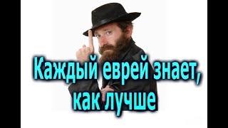 Каждый еврей знает, как лучше | Ютуб анекдоты онлайн