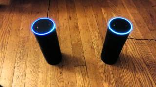 Two Amazon Echos chatting with each other #SeeBotsChat