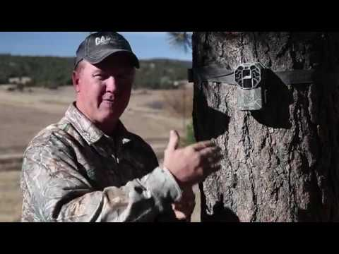 Stealth Cam G45NG Pro Overview - Danny Farris