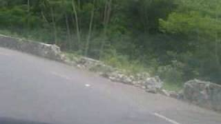 RIOT 77  downhill@interpraias high speed w/ sea