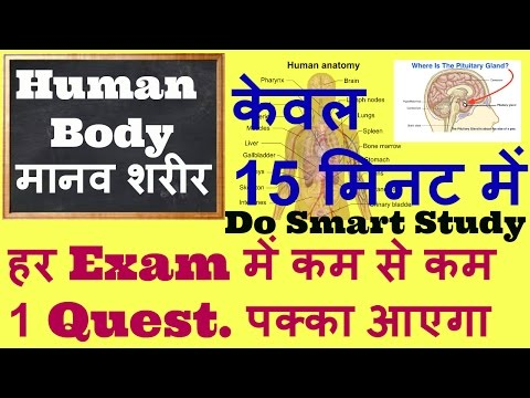 General Science for competitive Exams- Human Body Facts for ssc/ bank/and all govt exam || gk