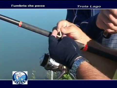 Sembrare da pesca di video una picca