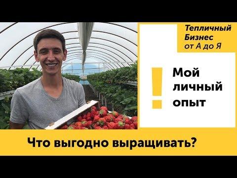 Что выгодно выращивать? Ответы на вопросы
