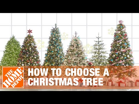 How to Choose a Christmas Tree - The Home Depot