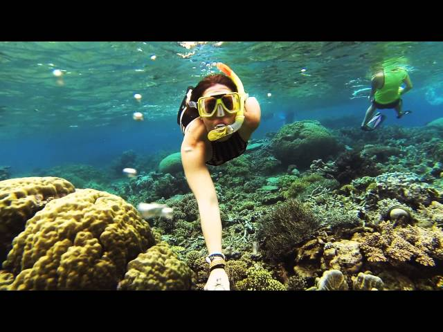 Snorkelling Great Barrier Reef, Cairns, Australia / GoPro HERO3 Black / June 2014